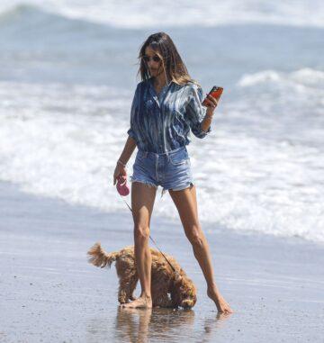 Alessandra Ambrosio Out With Her Dog Beach Malibu