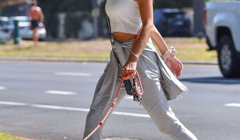 Alessandra Ambrosio Out With Her Dog Los Angeles (16 photos)
