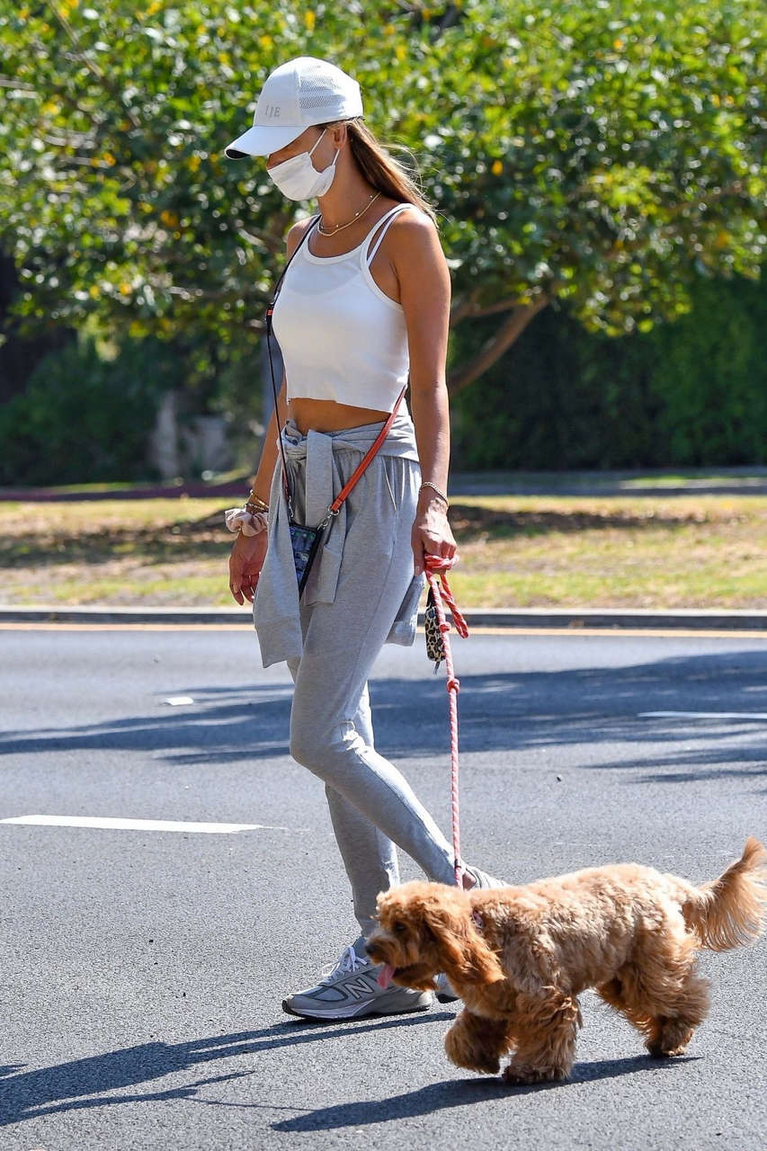 Alessandra Ambrosio Out With Her Dog Los Angeles
