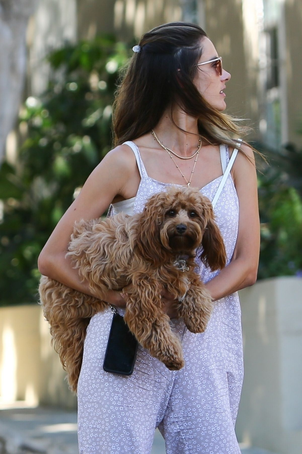 Alessandra Ambrosio Out With Her Dog West Hollywood
