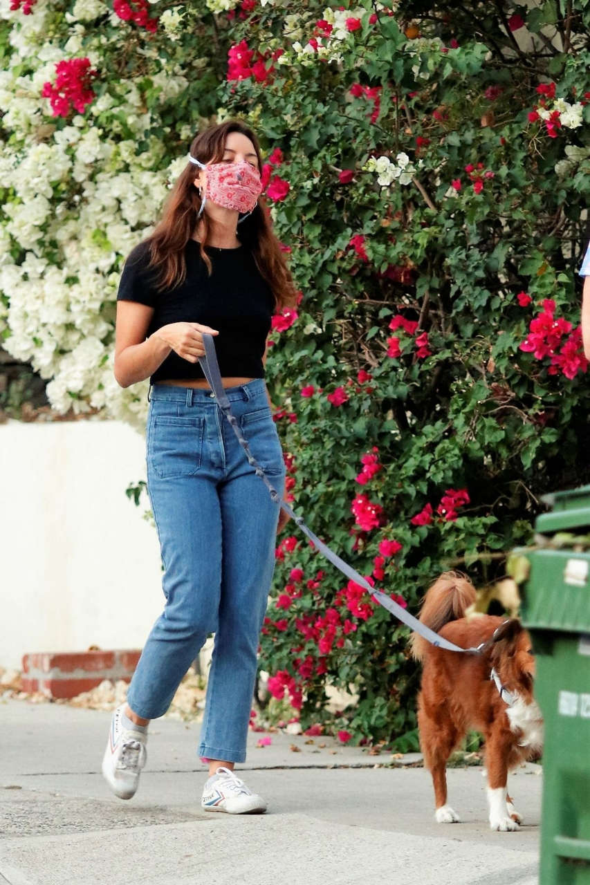 Aubrey Plaza Jeff Baena Out With Their Dogs Los Angeles