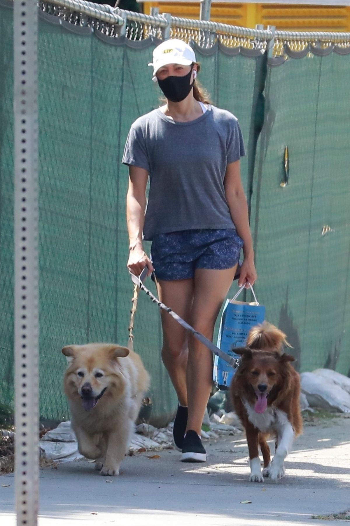 Aubrey Plaza Out With Her Dogs Los Feliz