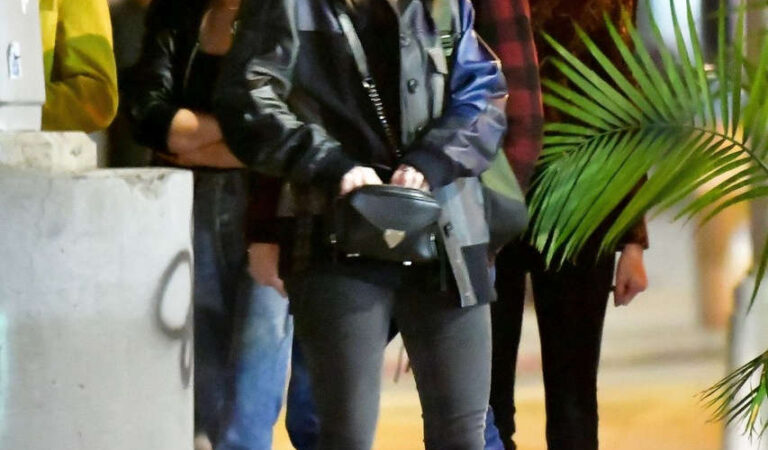 Barbara Palvin Out For Dinner With Friends New York (7 photos)
