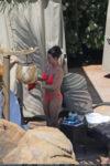 Britney Spears Bikini Beach Hawaii