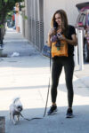 Chrishell Stause Out With Her Dog Los Angeles