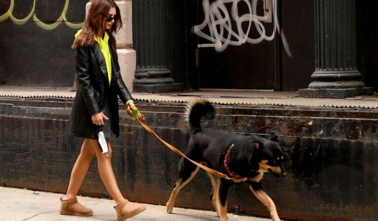 Emily Ratajkowski Out With Colombo New York (6 photos)