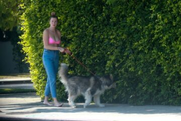 Ireland Baldwin Out With Her Dog Los Angeles