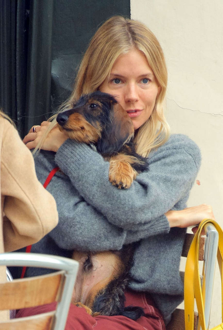 Sienna Miller Out With Her Dog London