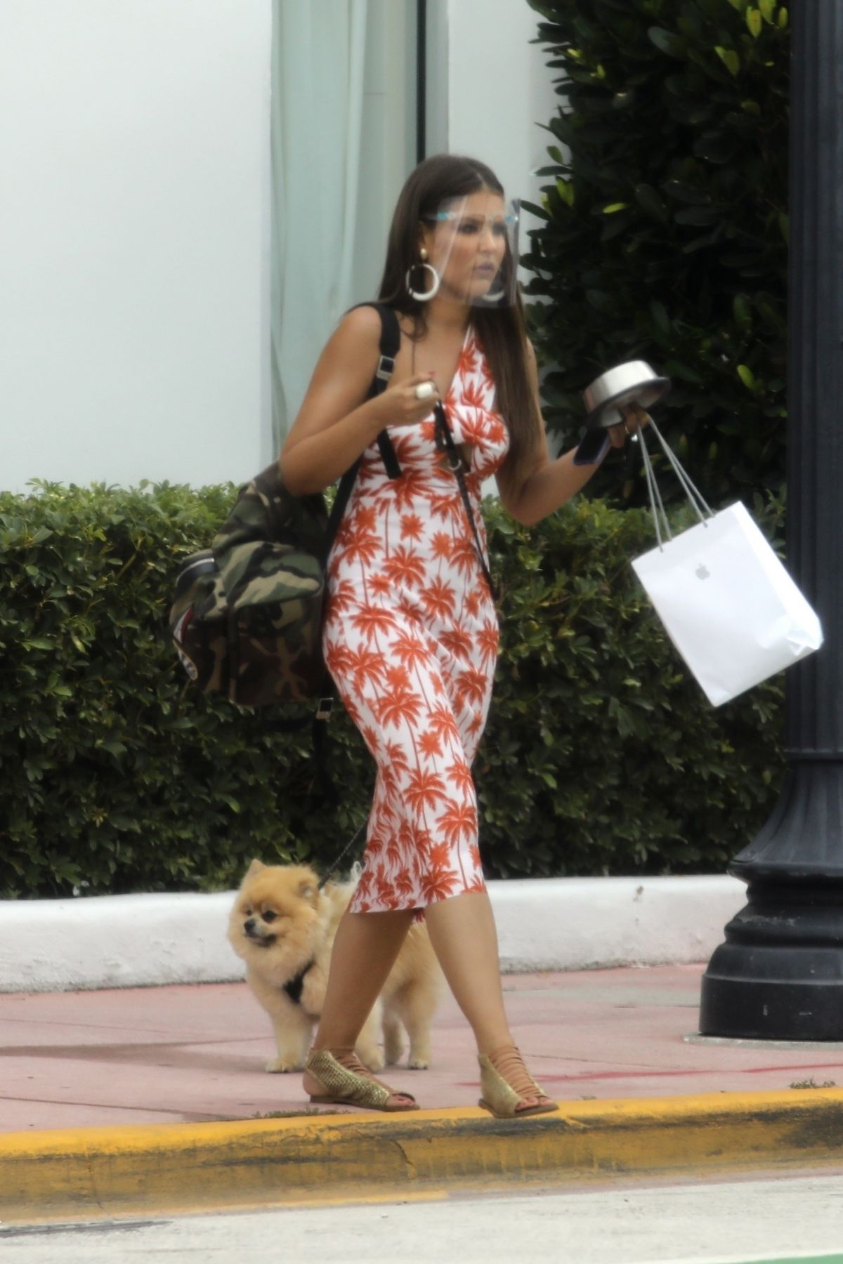 Vanessa Claudio Out With Her Dog Miami Beach
