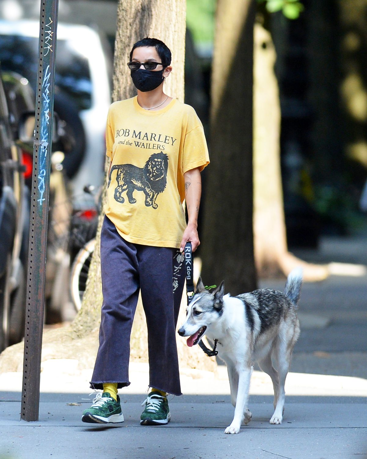 Zoe Kravitz Out With Her Dog New York